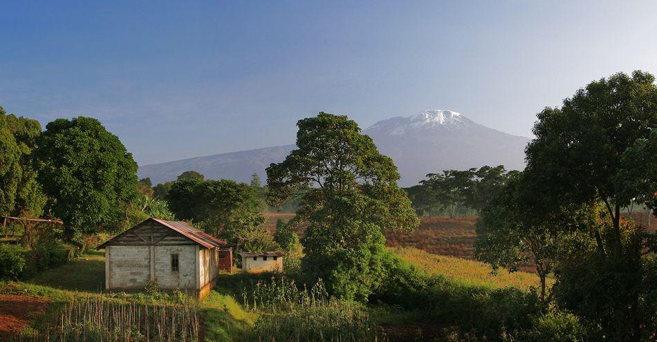 c10-Kilimanjarobarn.jpg